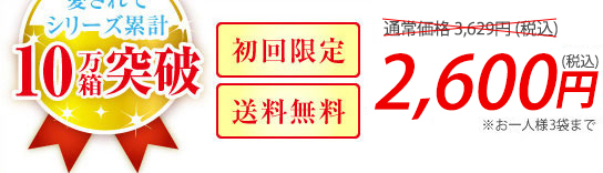 2,528円(税込)
